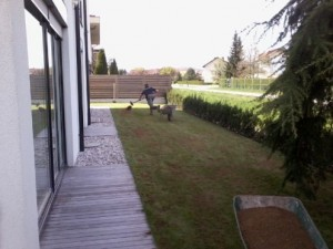 Urejanje Trave